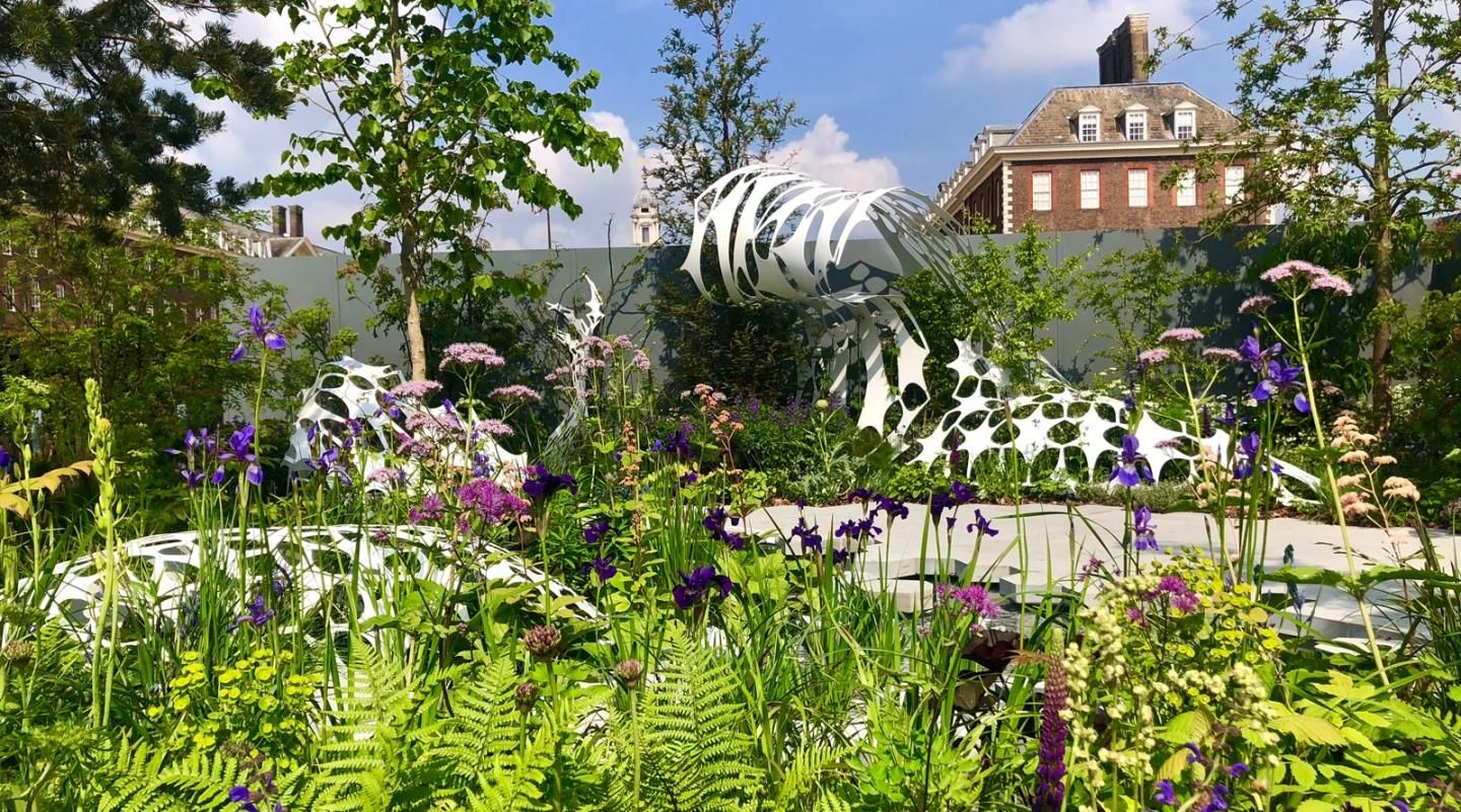 Exclusive 5 Highlights From Inside The Rhs Chelsea Flower Show