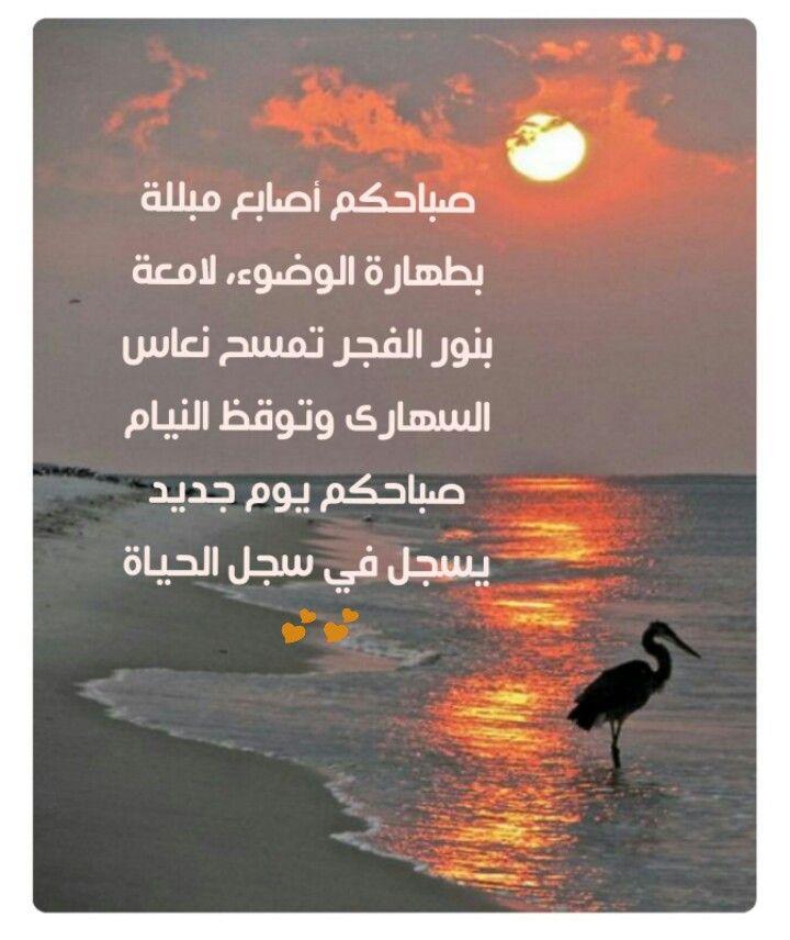 صباحكم يوم جديد Romantic Love Quotes Nature Good Morning