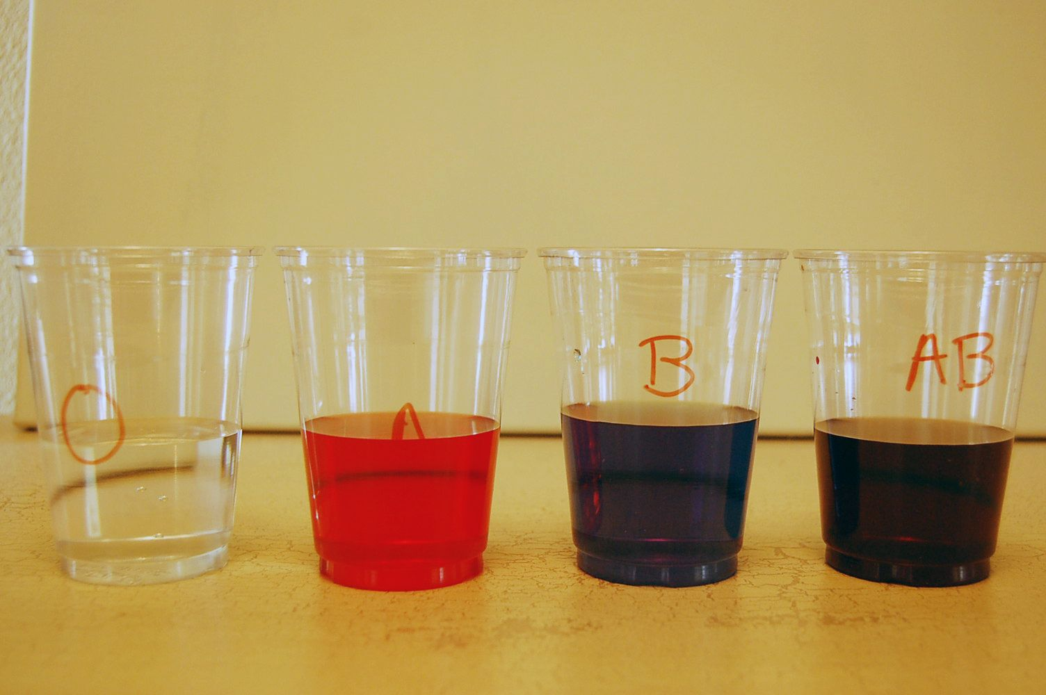 Blood Type Science Experiment