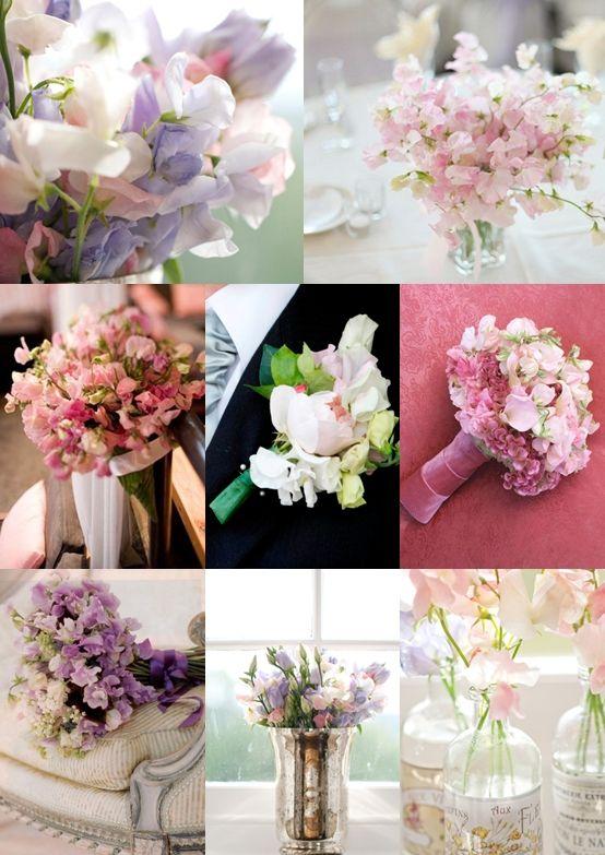Sweet Pea Wedding Flowers - Moody Monday - The Wedding Community ...
