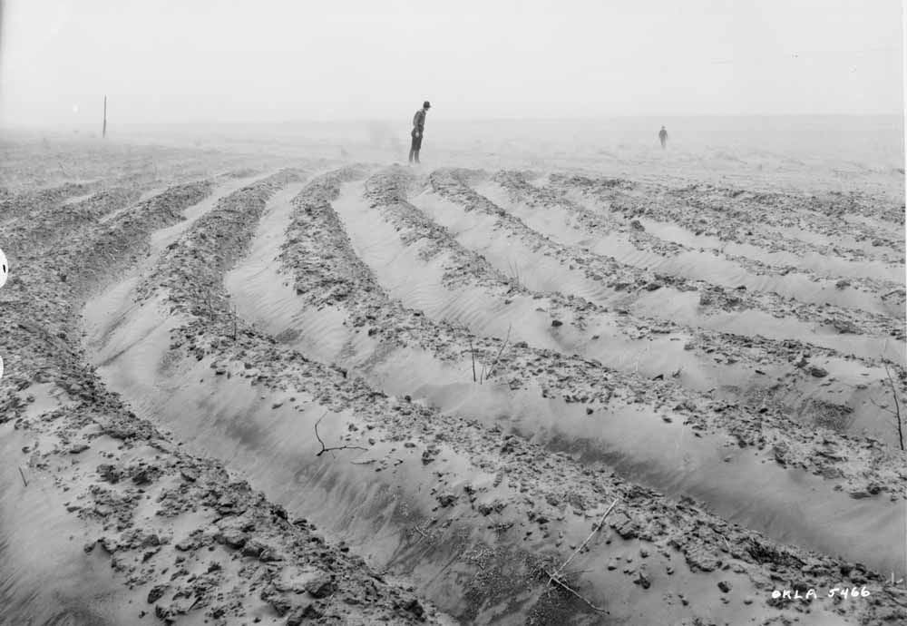 the dust bowl dirty thirties a Are the soil conservation lessons learned from the dirty thirties being forgotten  manitoba co-operator reporter allan dawson spoke with jim.