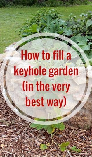 How to fill a keyhole garden in the very best way gardens raised beds and cuttings for How to fill a raised garden bed