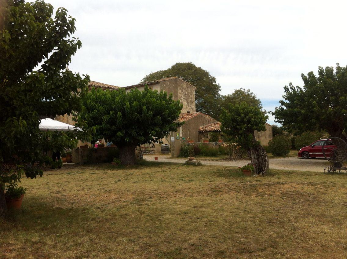 L'Hérault - la garrigue ! Un brunch en pleine nature
