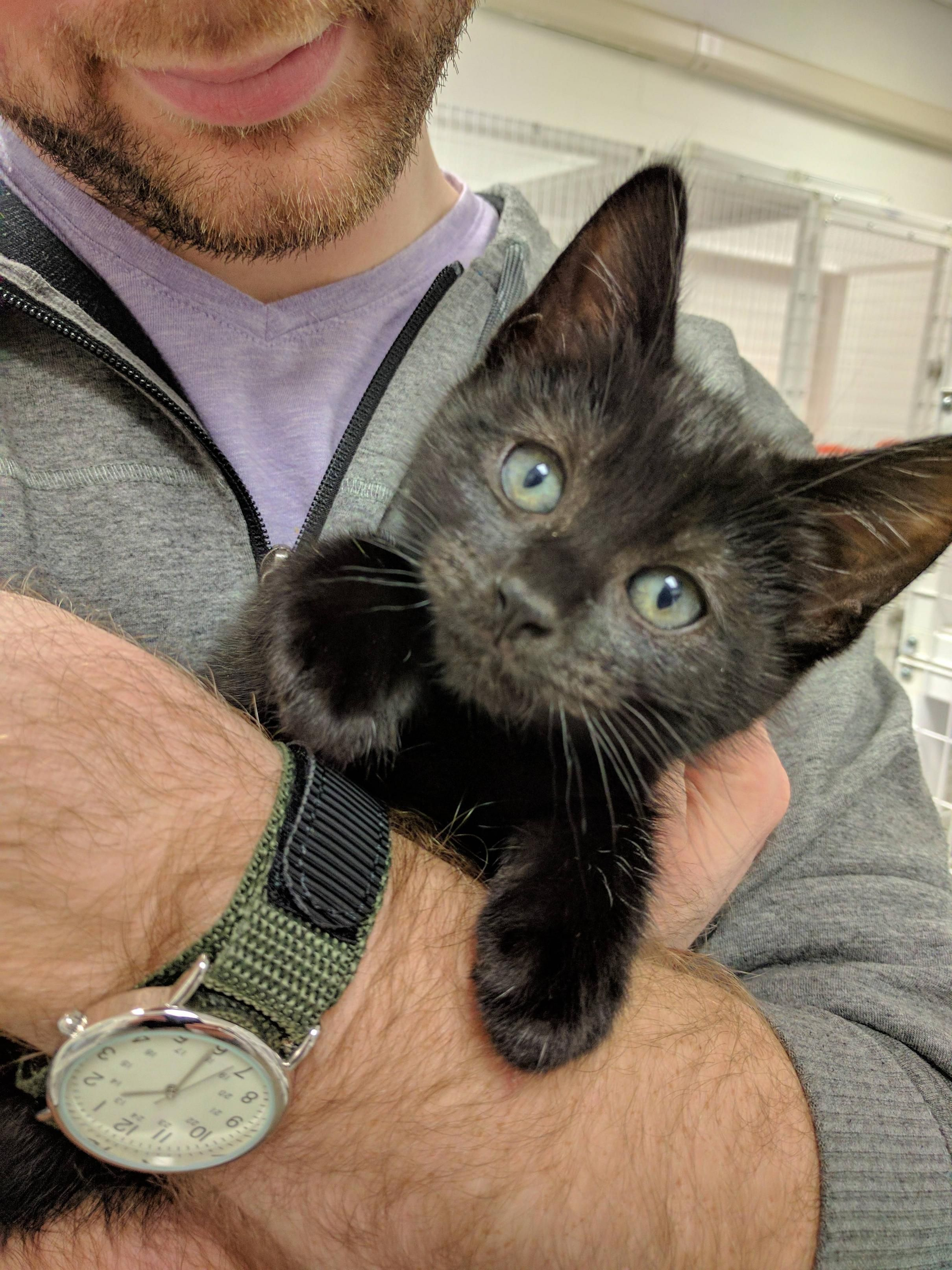 After three long weeks Momo finally gets to come home!