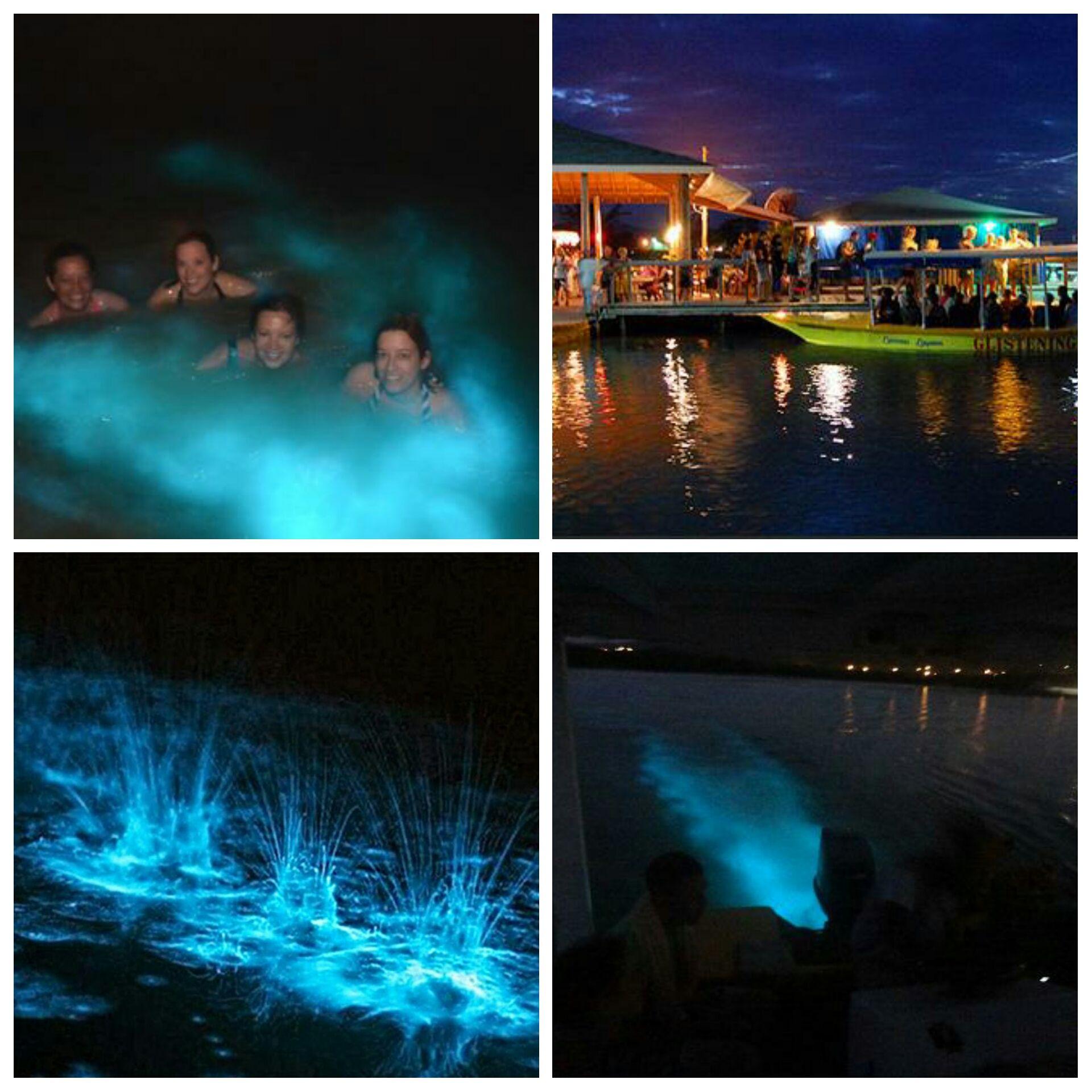 Glistening Waters (Luminous Lagoon) | Luminous lagoon jamaica ...