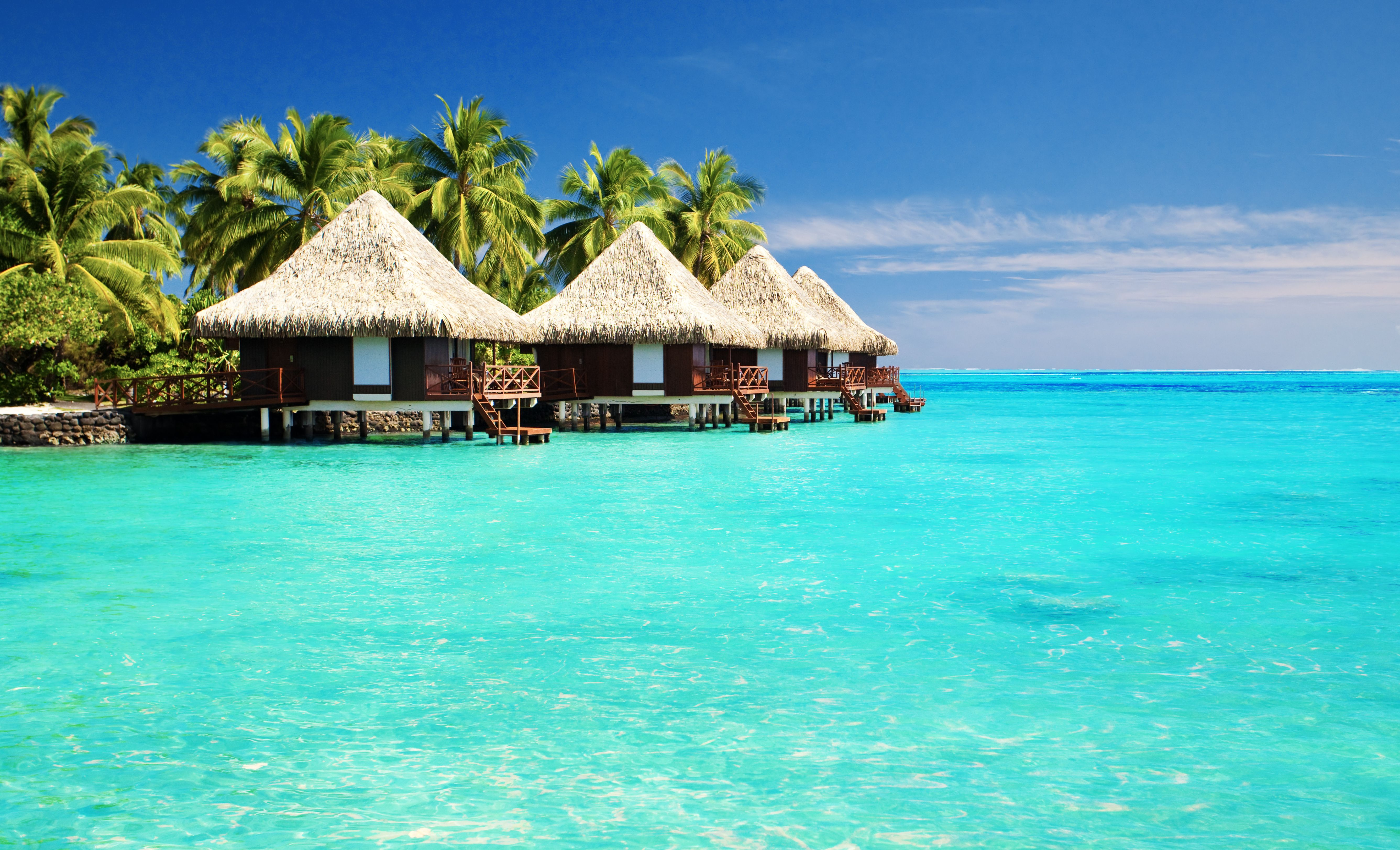 tropical paradise desktop background wallpapers hd free - 495651