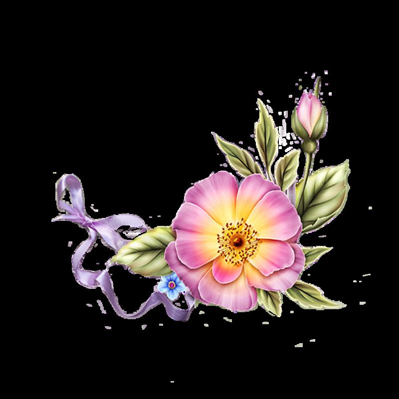 прозрачная картинка цветы второго пятый класс