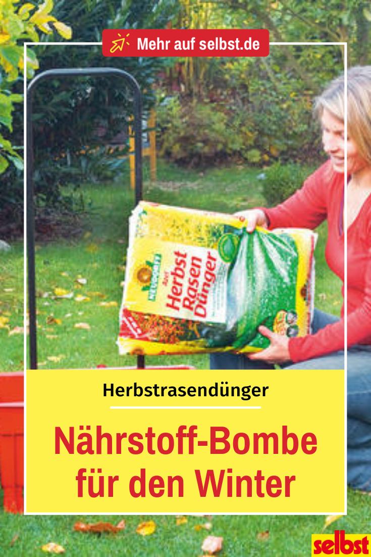 Herbstrasendunger Selbst De Rasen Rasen Dungen Rasenpflege