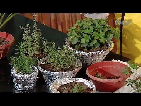 طريقة زراعة الروزماري والريحان والزعتر بالمنزل مطبخ الراعي فوود Youtube Planter Pots Islam Marriage Plants
