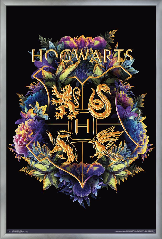 Trends International Harry Potter TV / Movies / Games Framed Poster