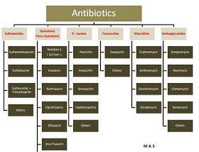Antibiotic classification | Pharmacology nursing, Nurse ...
