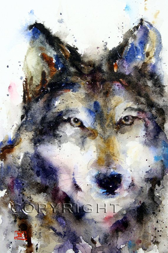 Loup Aquarelle Art Print Par Dean Crouser Illustrations Sur