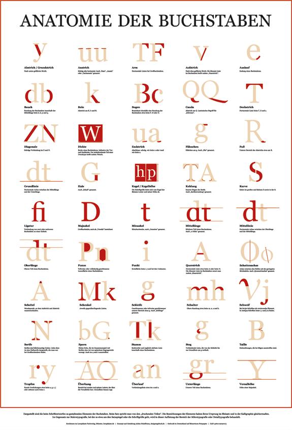 """Anatomie der Buchstaben"""" – Ein Poster für den Anfang. Zum ..."""