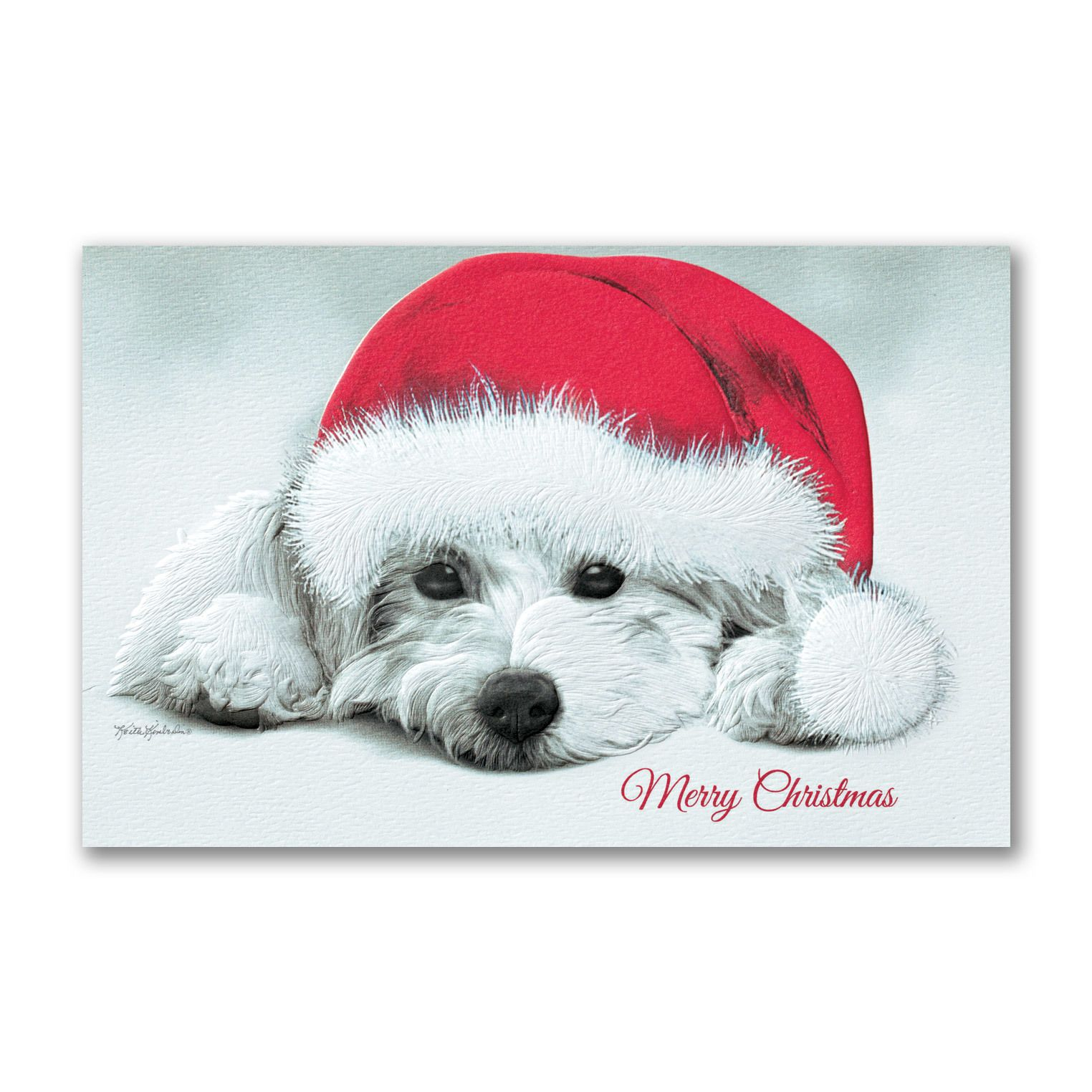 Christmas Puppy - Christmas Card | Christmas Cards | Pinterest