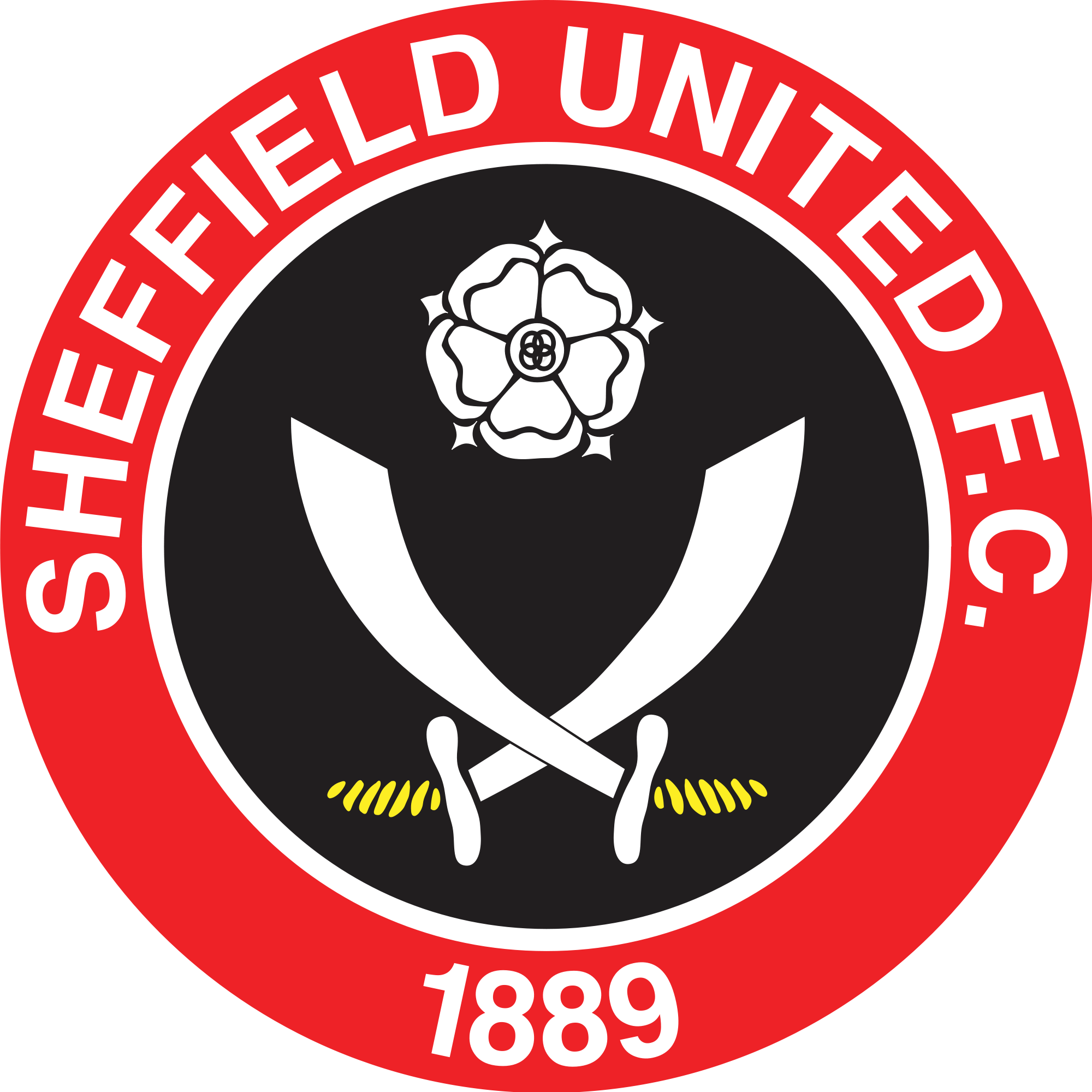 Sheffield United. Ok had to put this on to keep the boys ...
