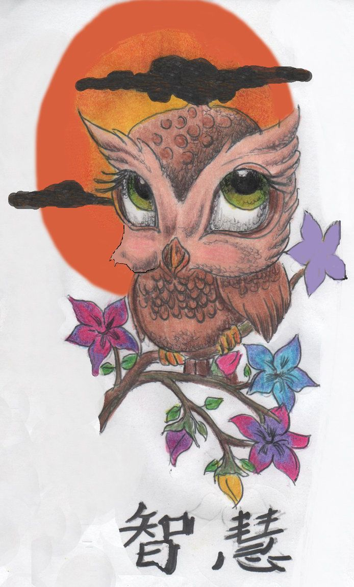 owl drawings owl tattoo by mt pockets on deviantart owls