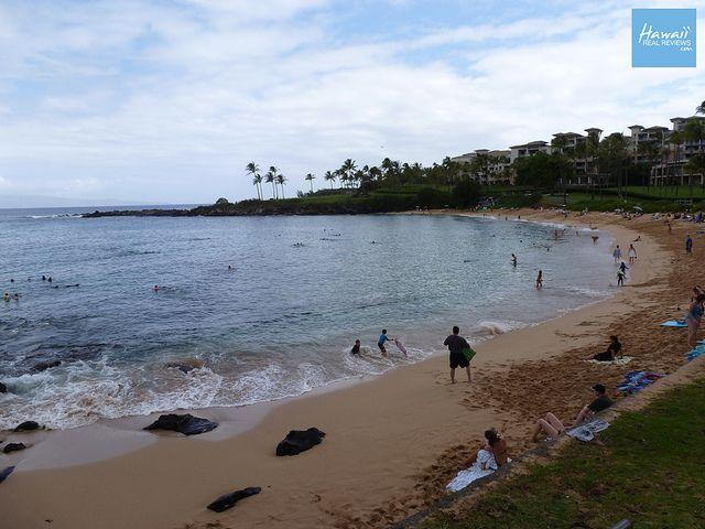 Maui Beach - Kapalua Beach    Click Here for Full Review of this Maui Hawaii Beach: www.hawaiirealreviews.com/maui-reviews/maui-beaches/kapal...    Official Website: www.hawaiirealreviews.com    Hawaii Real Reviews - Maui Beach Reviews    Unscripted and Unce :) repin!
