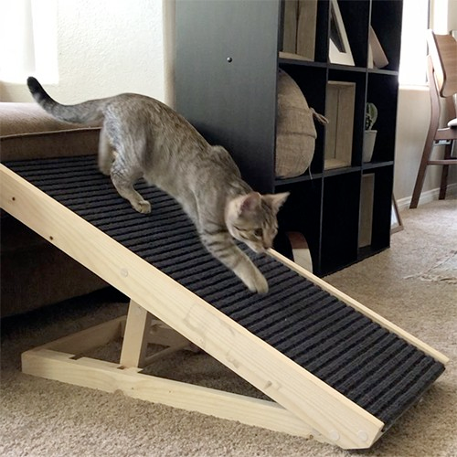 Scratchy Ramp Cat Ramp Cat ramp, Cat scratcher