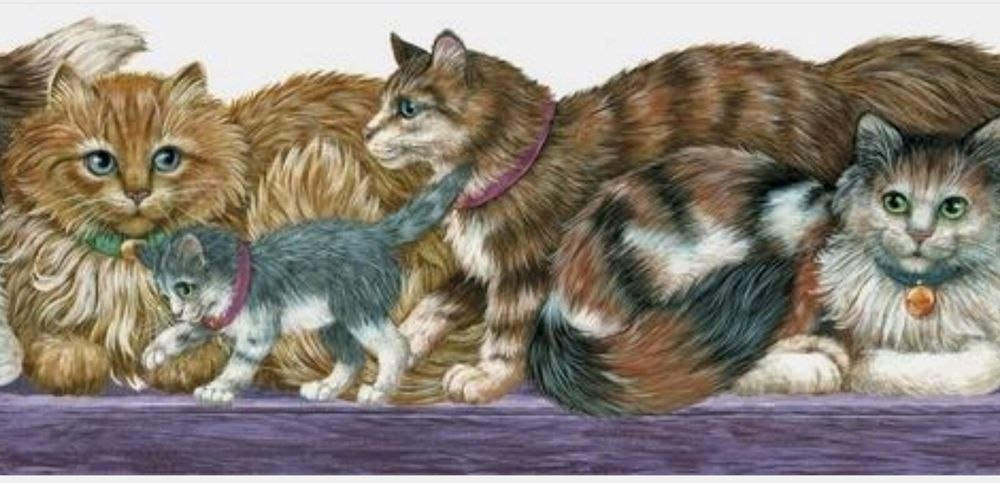Fluffy Longhair Cat Kitten wallpaper border 15 ft ISB4102B