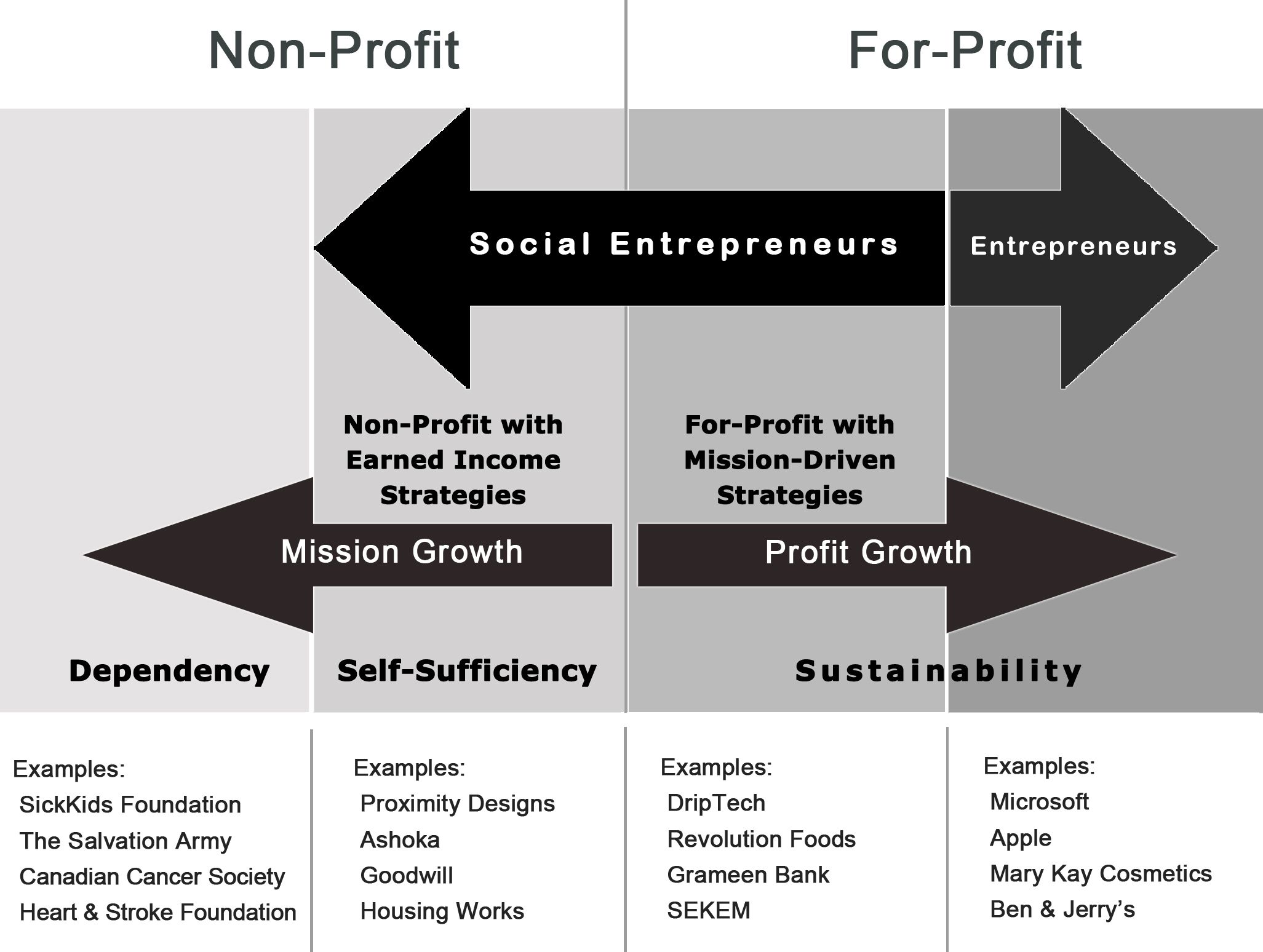 Social Entrepreneurship: Definition and Boundaries