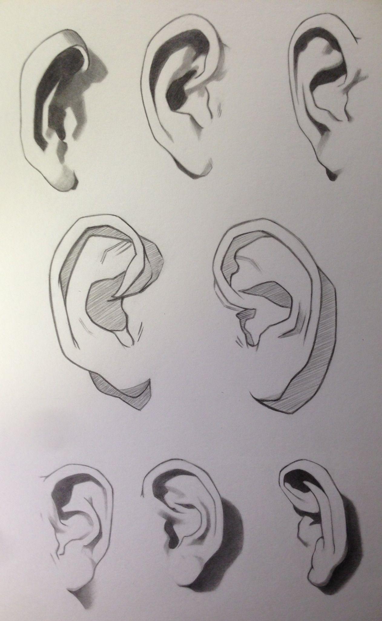 Orejas | Dibujos | Pinterest | Anatomía, Dibujo y Dibujar