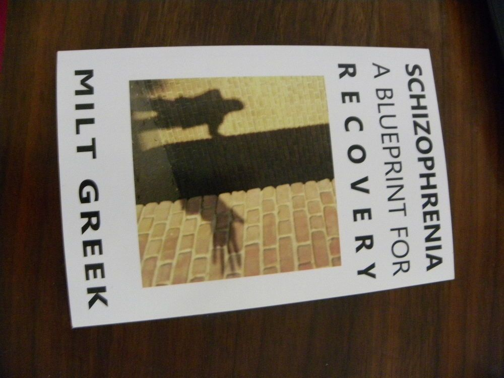 Schizophrenia a blueprint for recovery by milt greek paperback book schizophrenia a blueprint for recovery by milt greek paperback book english malvernweather Choice Image