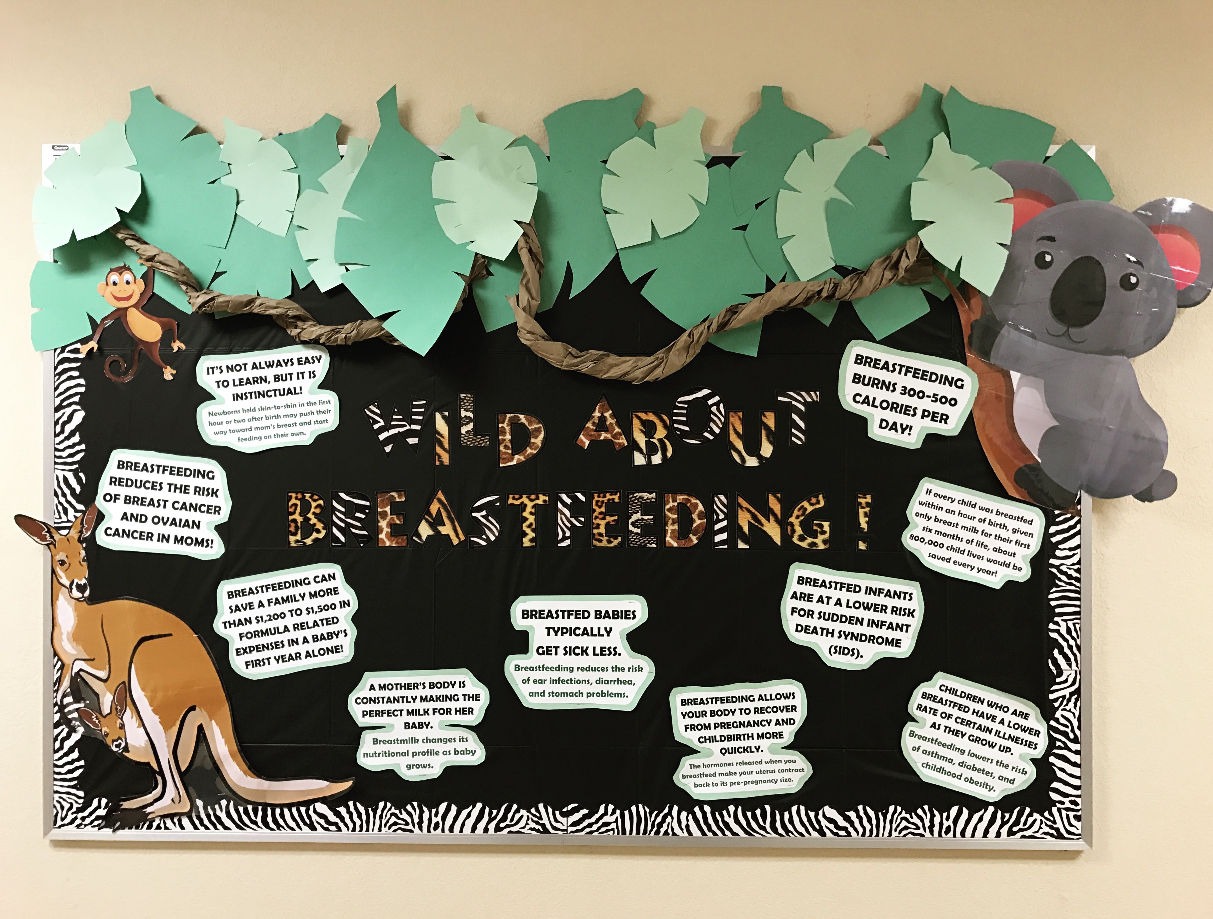 Breastfeeding Bulletin Board Breastfeeding Awareness
