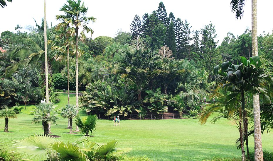 Botanic Gardens the most spot in the city in