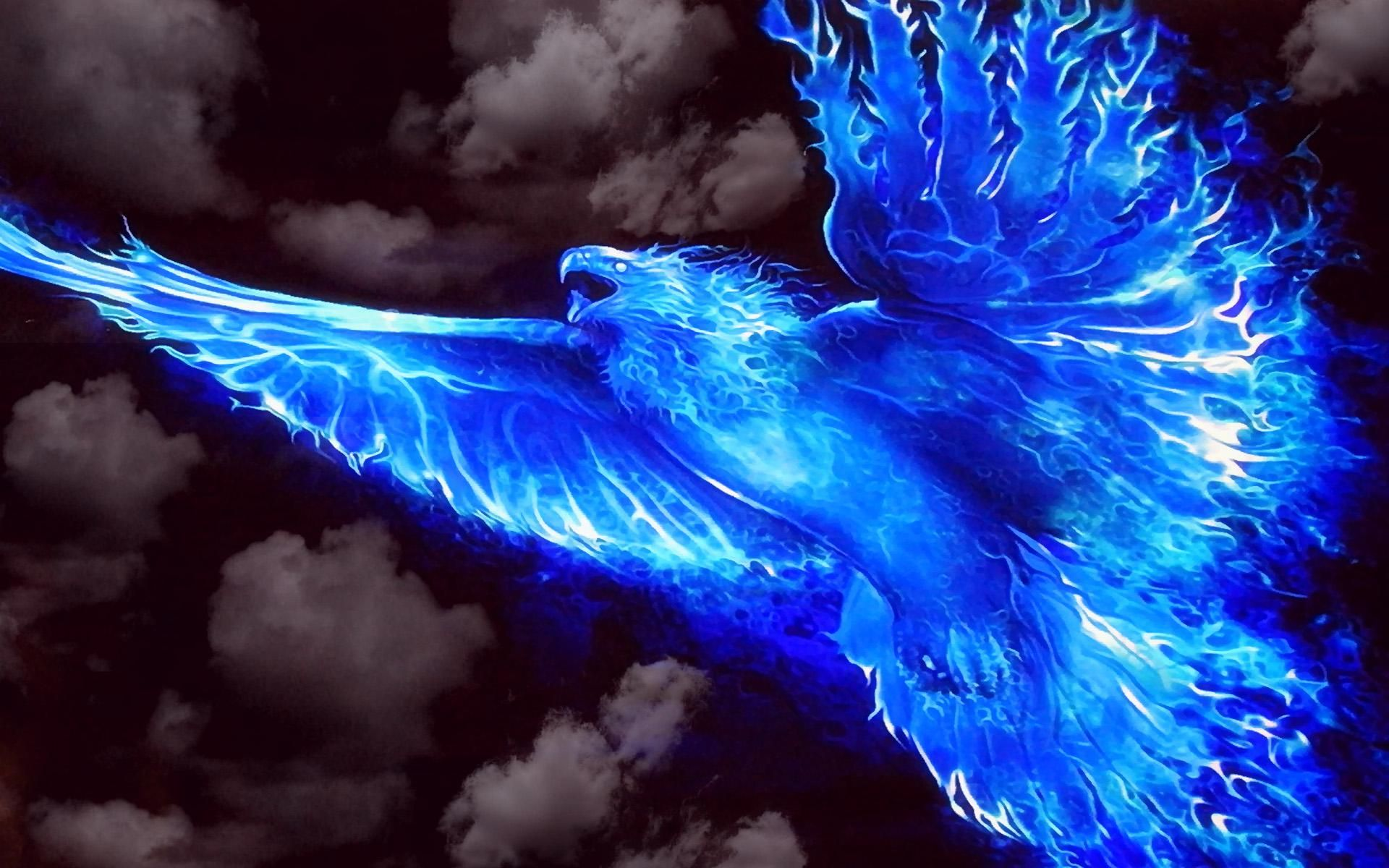 http://hqwallbase.pw/images/big/fire_bird-1566100.jpg