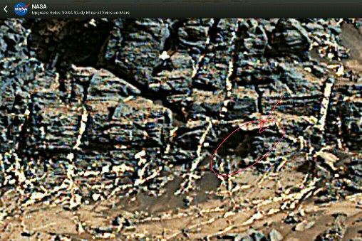 Sensation or joke from NASA. Here's what I found looking at the images from Mars. This is a photo of the mission Curiosity. People? ??????