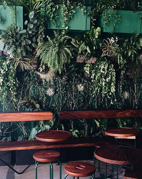 Living Wall And Wooden Tables // Verve Coffee In Downtown Los Angeles //  Photo