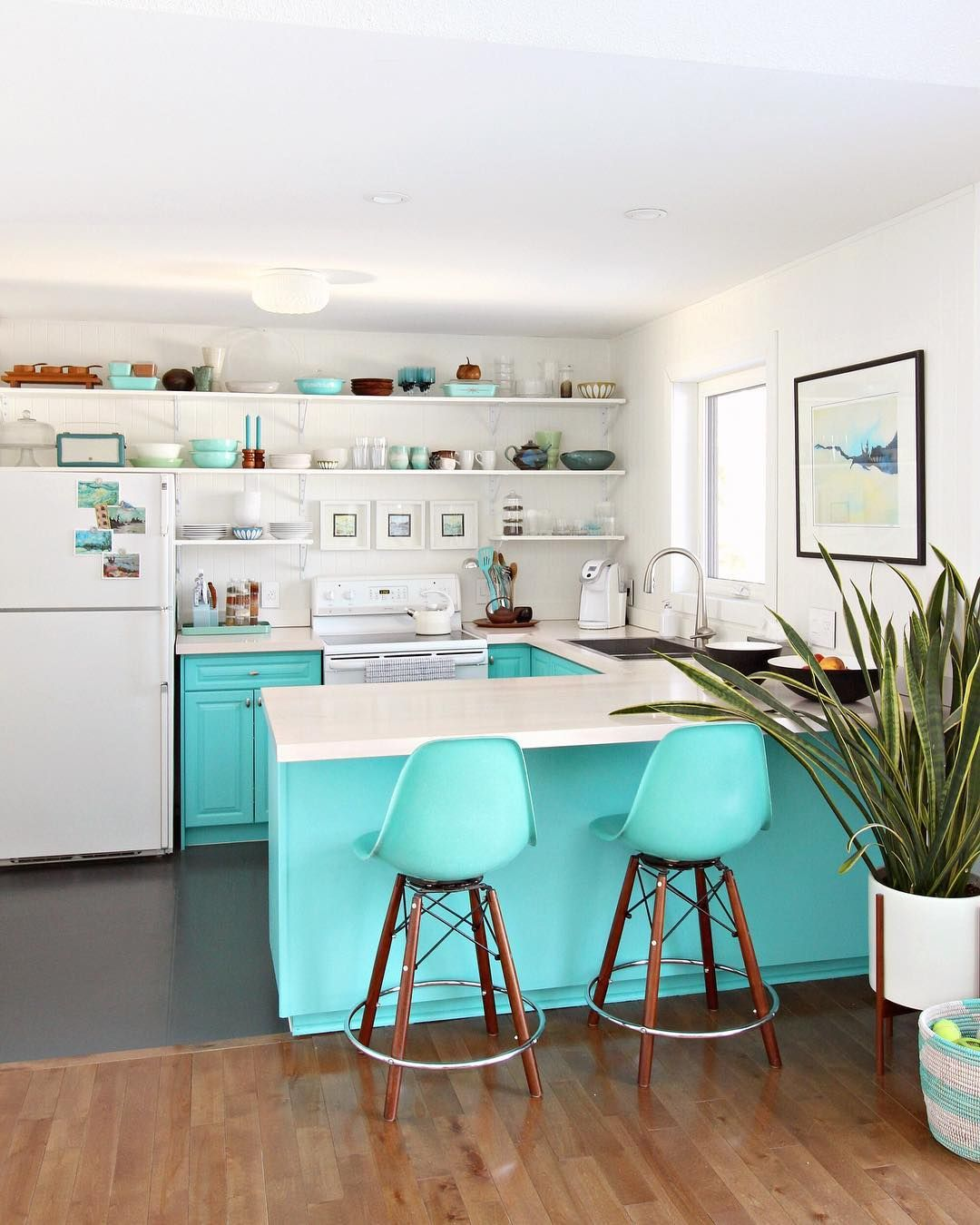 bold turquoise kitchen with open shelving and vintage