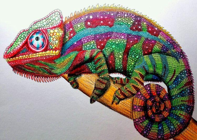 картинки как рисовать хамелеона перебои работе