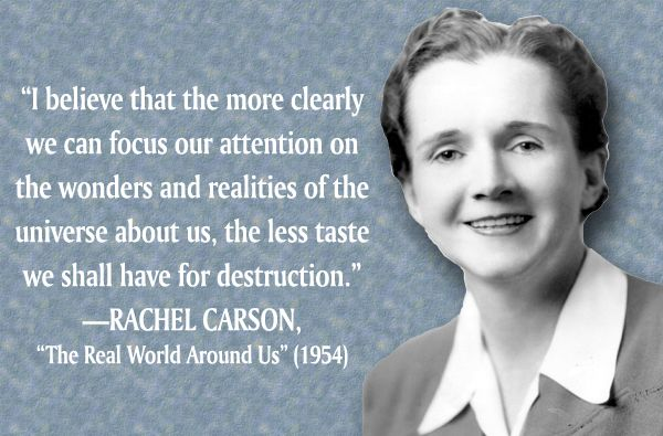 Rachel Carson—writer, Scientist, Ecologist, And Founder Of