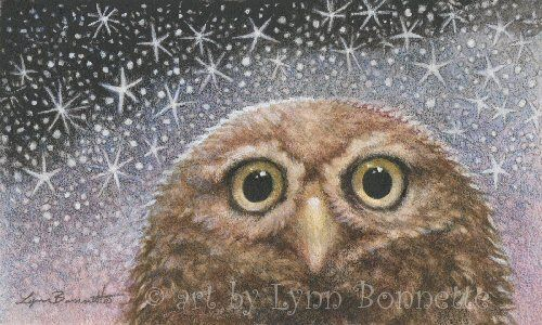"Art by Lynn Bonnette: ""Starry Starry Night Owl"""