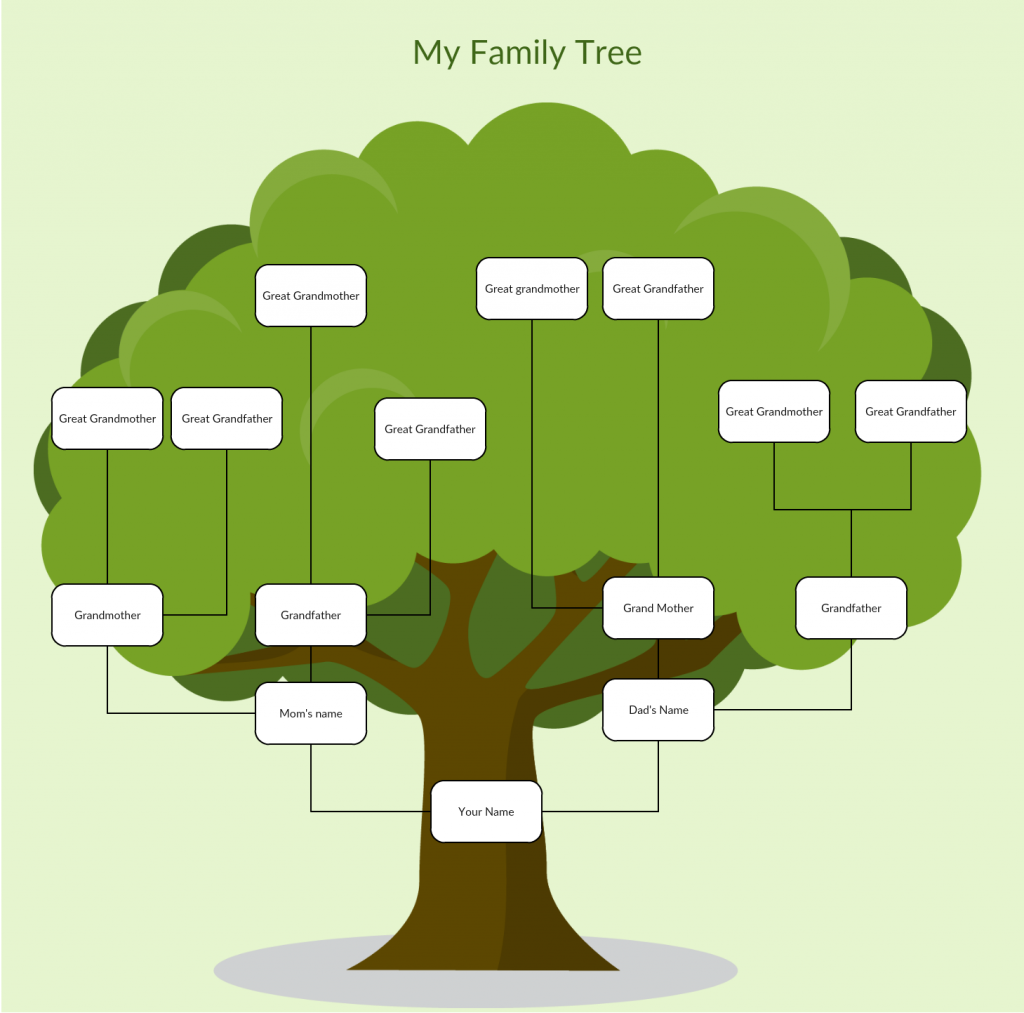 How To Organize Your Family Tree On Linux With Gramps