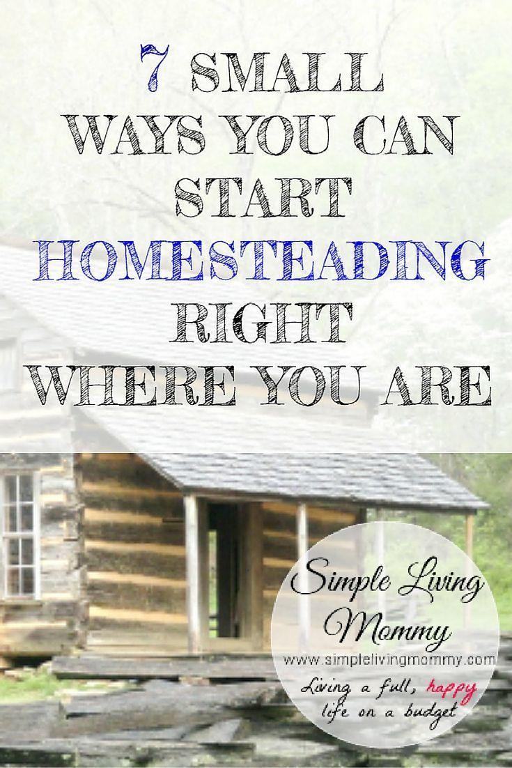 Ways to Homestead Anywhere - Even with a Young Family! If you think you have to wait until you have lots of land before you can start your homesteading journey, this article will change your mind!  It gives great ideas to start wherever you are, even an apartment!If you think you have to wait until you have lots of land before you can start your homesteadi...