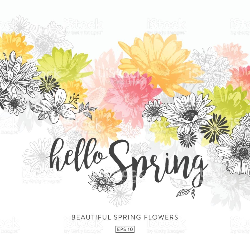 Modern Floral Graphic Design Watercolor And Line Art Illustration