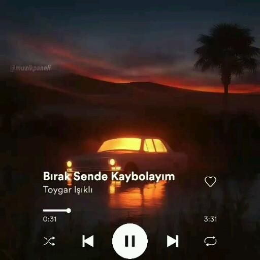 Toygar Isikli Birak Sende Kaybolayim Video Sarkilar Muzik Indie Muzik