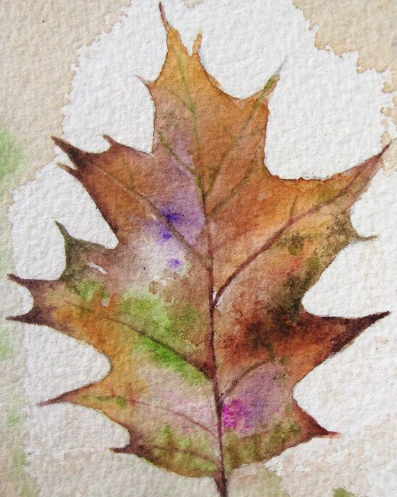 Watercolor Painting Original Autumn Oak Leaf By Dianamturnerart