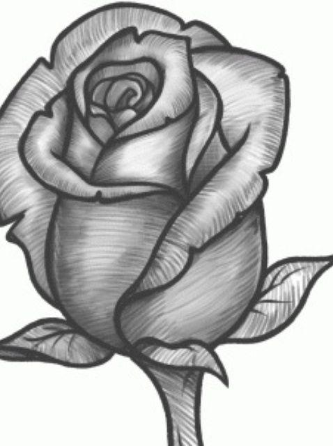 How To Sketch A Rose Recipe Rose Sketch Roses Drawing Rose Art