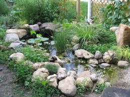 Wildlife Pond Images Google Search Garden Design Water Garden Garden