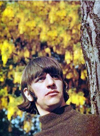 We All Live In A Yellow Submarine,Yellow Submarine — the-fool-under-the-hill:   Ringo