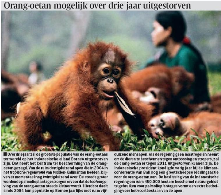 http://tsjok45.wordpress.com/2012/12/13/primaten-in-gevaar/  uitstervende primaat