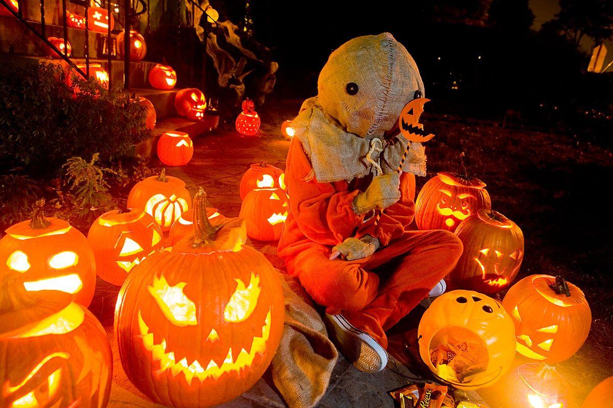 no te quedes sin decorar con calabazas en halloween 2015! ya sabes