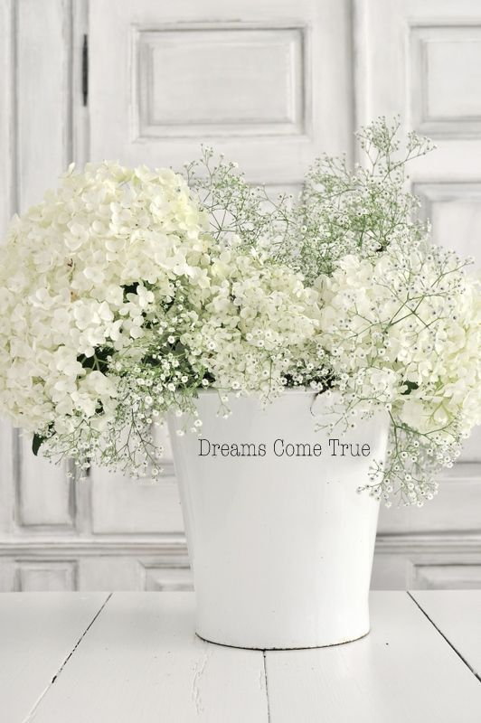 inexatamente simple white flower arrangement great on sweet dreams for your home plants decoration precautions and options id=35581