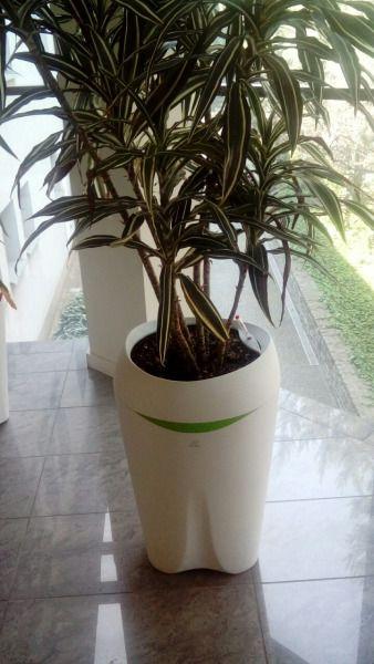 Dzieki Naszym Doniczkom Samonawadniajacymi Hagsen Planters Plants Planter Pots