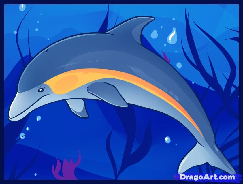 Learn How to Draw Dolphins, Sea animals, Animals, FREE Step by ...