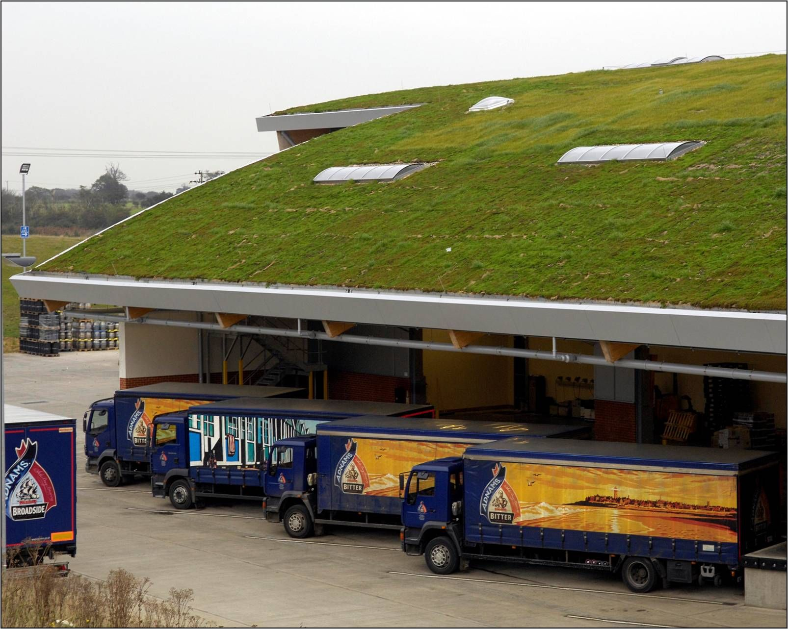 warehouse with a green roof : roof warehouse - memphite.com