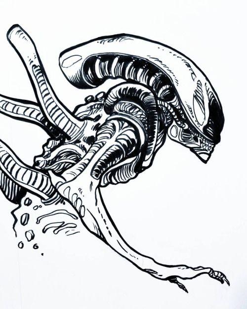 Bryanwestart I Like Drawing Xenomorphs When I Am Not Alien Artwork Alien Drawings Spongebob Drawings